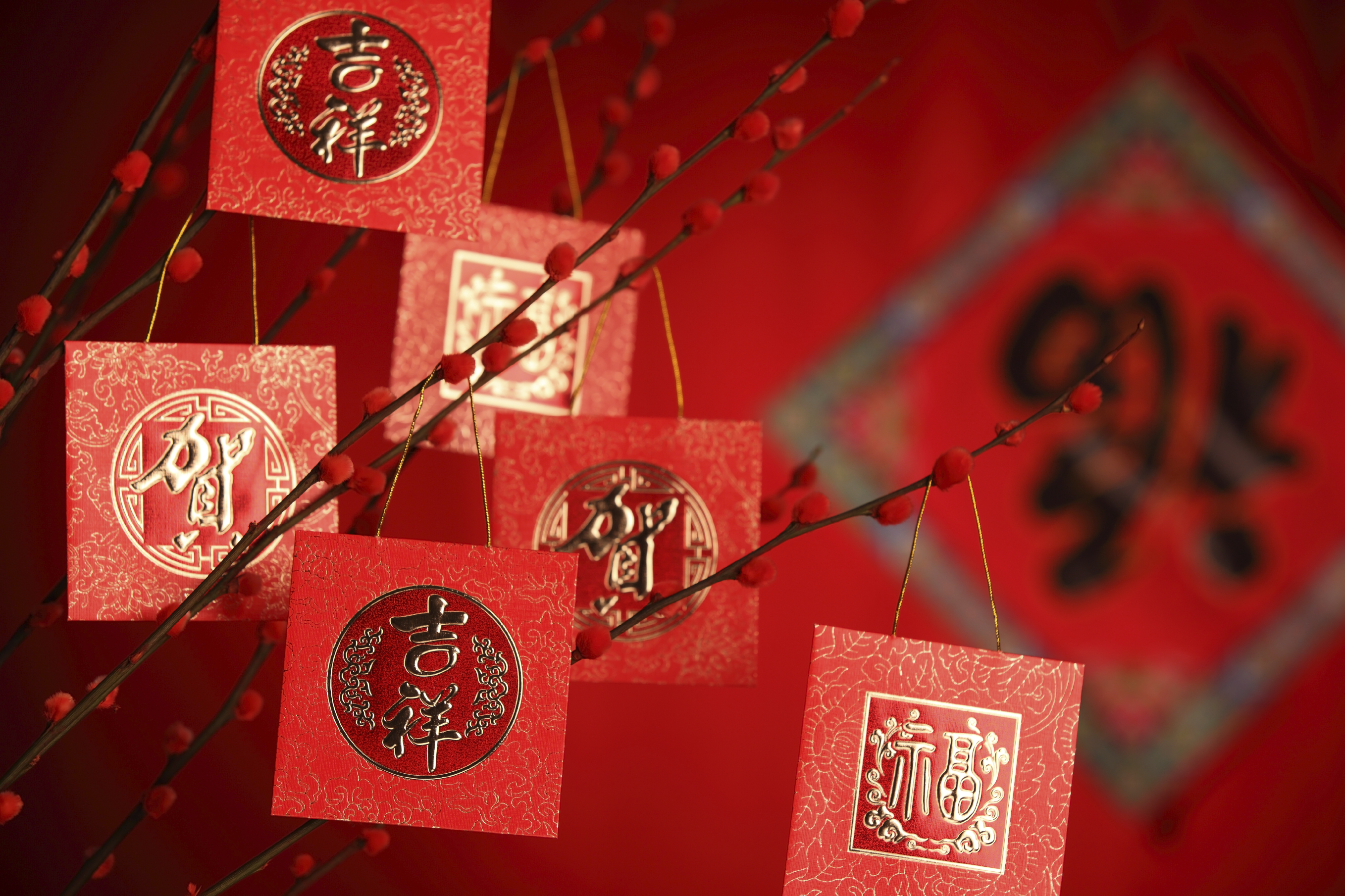 Ways to Celebrate Chinese New Year and Why You Need to Buy ...