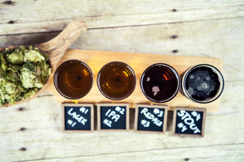 beer-tasting-sydney