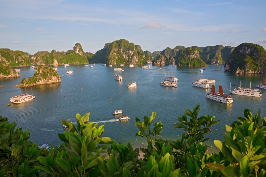 Junk Boats in Halong Bay
