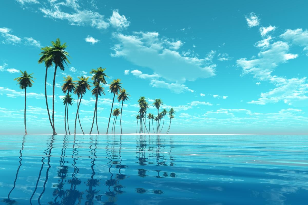 6 Essential Fiji Experiences